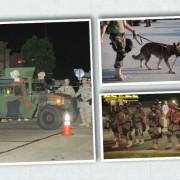 Ferguson's looters propel racist police agenda